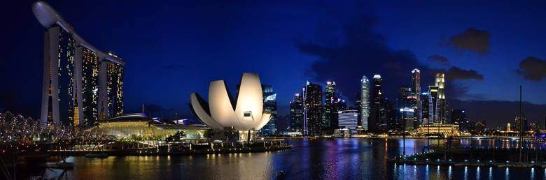 Pent-up demand lifted Singapore's residential market