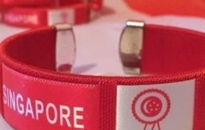 10 pcs Singapore Wristband