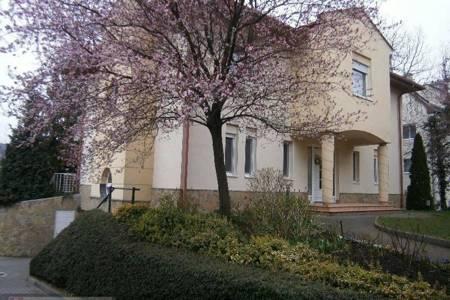 Eladó  családi ház Budapest II. ker, 320.000.000 Ft, 425 négyzetméter