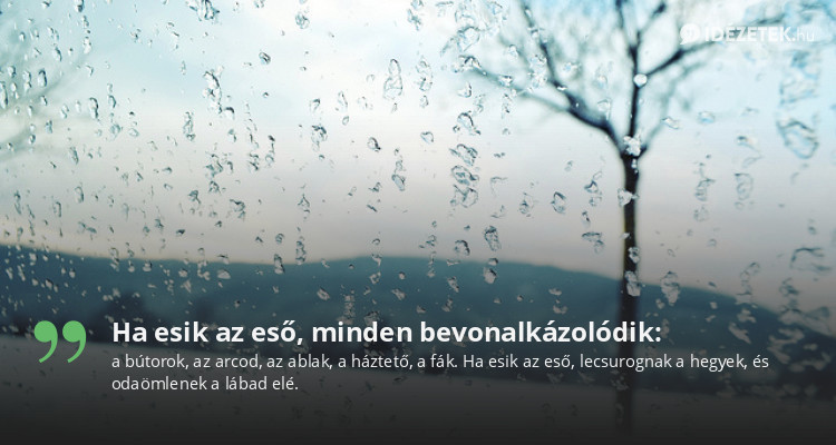 idézetek magányról Legjobb Magányról idézetek   Idezetek.hu